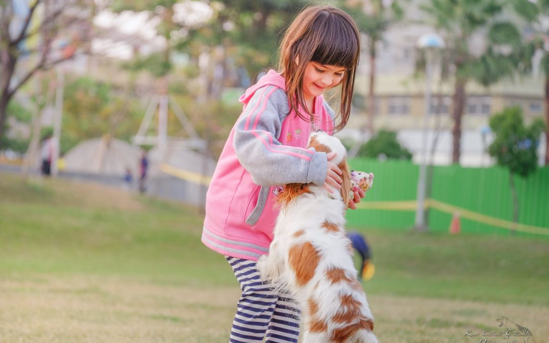 Pair Your Kid's Personality with the Right Pet